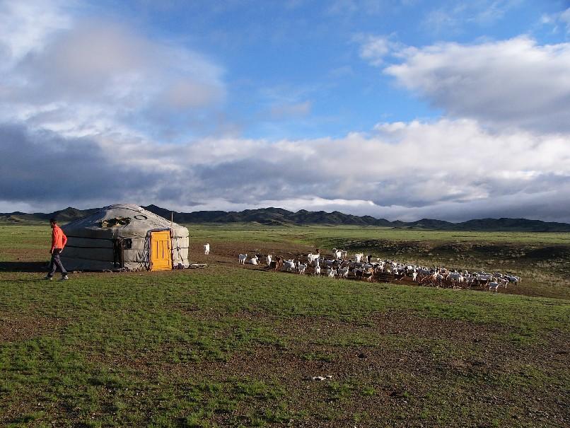 plateaux de l'Altai